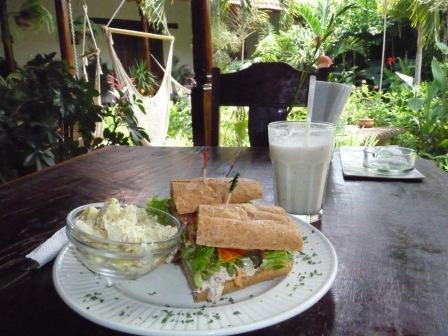 Tuna-sandwich-cafe-jardin