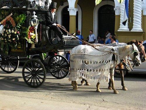 Funeral procession in Granada